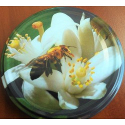 Méhecske fehér virágon