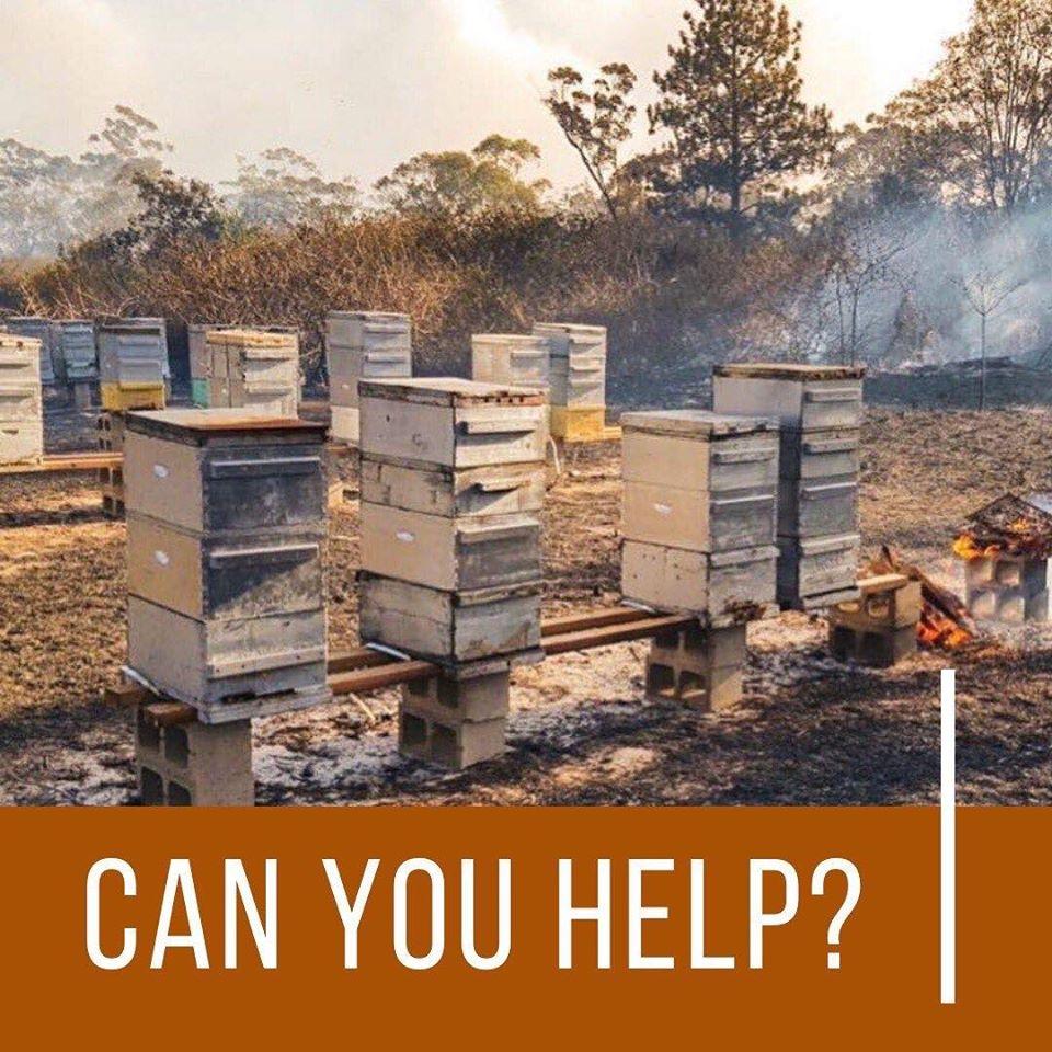Ausztrál méhészet bozóttűz után